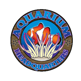 Aquarium Headquarters