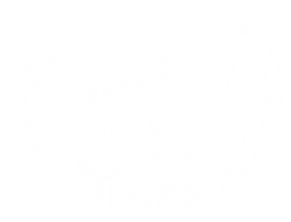 Hurricane Dixie Leather