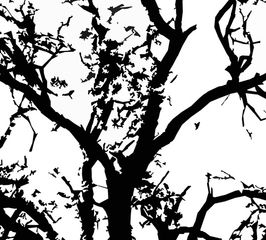 minimalism, black and white, tree abstract, triptych, home decor, wall art, wall decor, prints