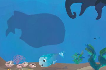 A Little Fish Finds New Friends is a children's book and bedtime story that goes on an oceanic adventure with a little fish leading the way. This kids book comes with a song; and the book without the song is only half the story!