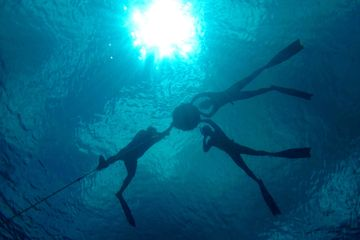 Freediving Course Cozumel