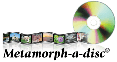 Metamorph-a-disc