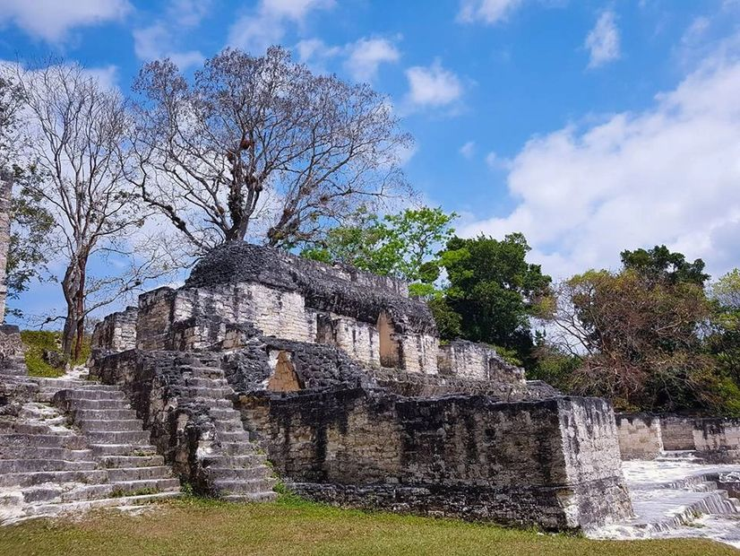 Tikal National Park was declared in 1979 a Unesco World Heritage Site.