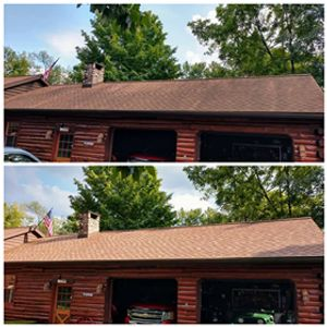 roof cleaning pressure washing softwashing