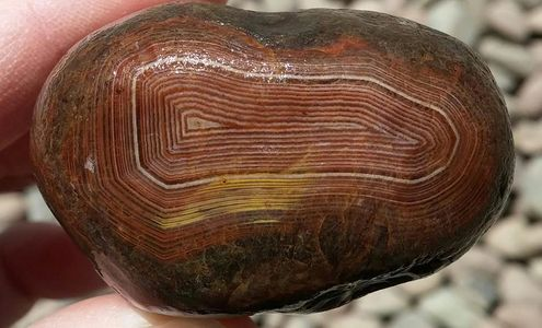 Minnesota Gemstone, Lake Superior Agate. Found in the piles at Get Pickin, in Cloquet, MN.
