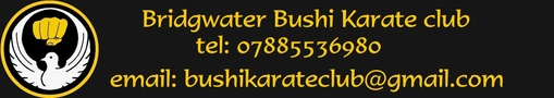 Bridgwater Bushi Karate Club