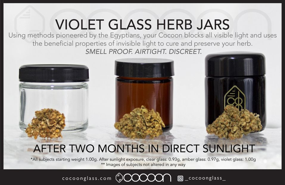 Cocoon protects better than clear or amber glass in a cannabis comparison.