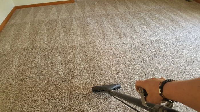 Carpet Cleaners Ocean County Nj Two Birds Home