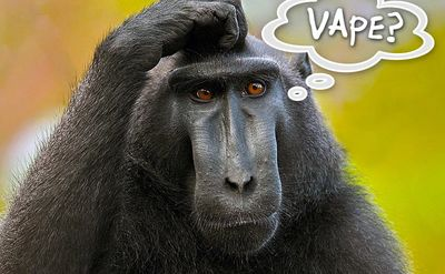 Confused about vape