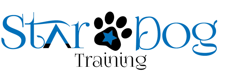 Star Dog Training