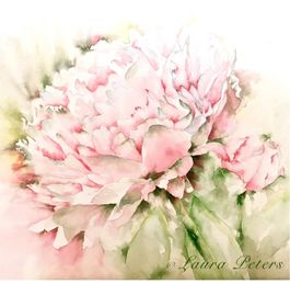Watercolor Garden Peony by Laura Peters