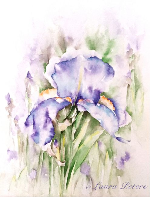 Watercolor Iris by Laura Peters