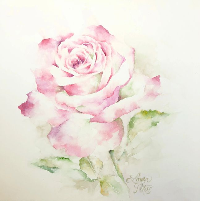 Watercolor Rose by Laura Peters