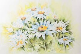 Watercolor Daisies by Laura Peters