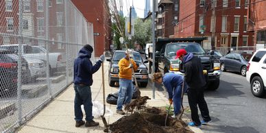 Spring Garden CDC - Street Sweeping, Anti-Litter Programs, Cleanups, Trees
