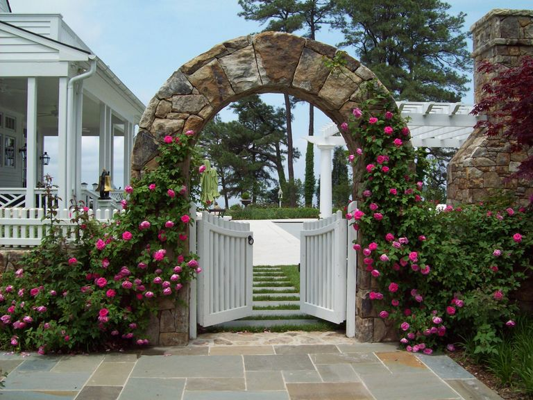 St. Michaels, MD. Climbing roses on archway.