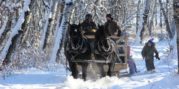 Horse drawn sleigh & wagon rides.