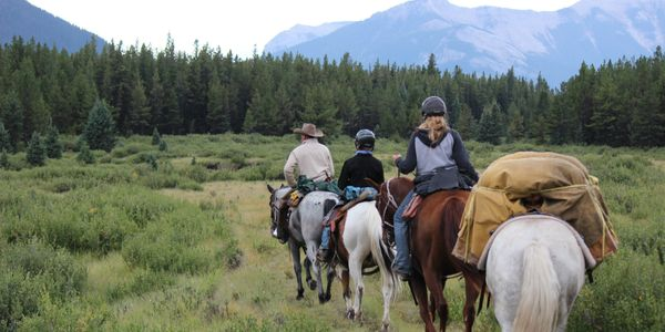 Horseback riding in the Alberta Rocky Mountains. Pack trips and horse drawn wagon adventures.