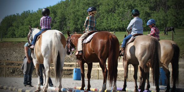 Summer Riding Camps & Lessons of all riding levels & ages.