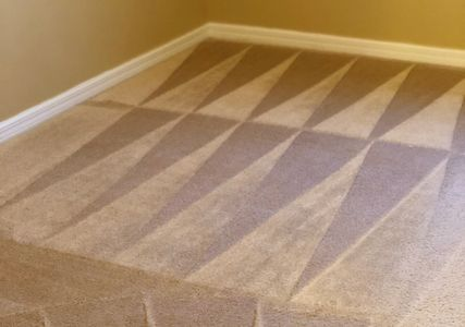 Carpet Cleaning in Sarasota, FL