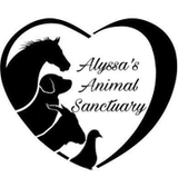Alyssa's Animal Sanctuary