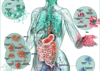 The affects of digestive health and overall health.