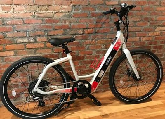 Electric Bicycle Rental