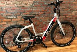 Electric Bicycle Online Sales