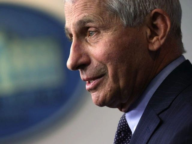 White House Endorses 'Incredible' Dr. Anthony Fauci;  Reject the comment