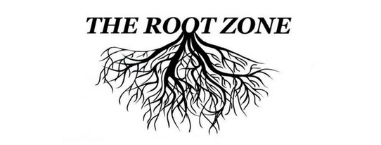 The Root Zone