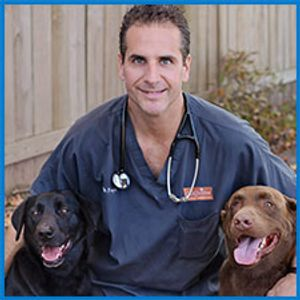Dr. Brian Foye, owner of Longview Animal Hospital with his two dogs.