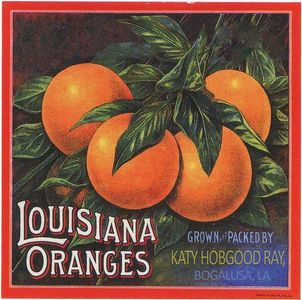 Album cover for Louisiana Oranges with link to Spotify listening