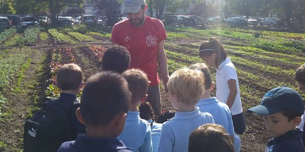 We host educational demonstrations for local schools to educate them on sustainable farming.
