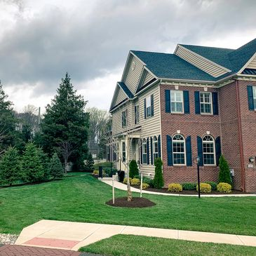 Antolino Landscaping Landscaping Tree Service