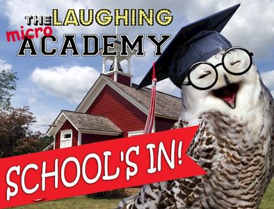 The Laughing Academy pod micro school