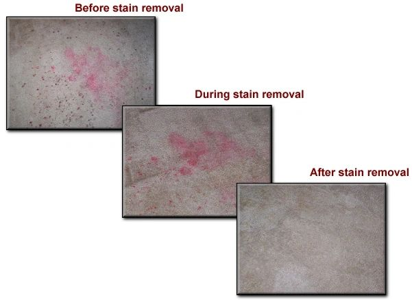carpet stain removal process image