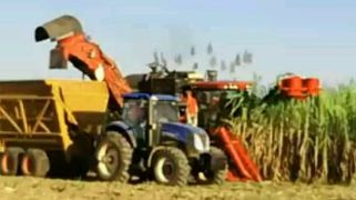 cane harvesting - minimum row spacing 1.5m, we can harvest at ground level at 50MT/hr.