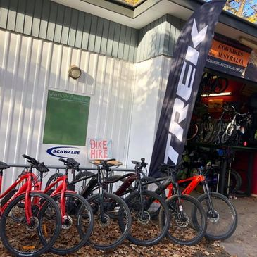 Warburton Bike Shop Warburton Bike Hire Warburton Bike Servicing