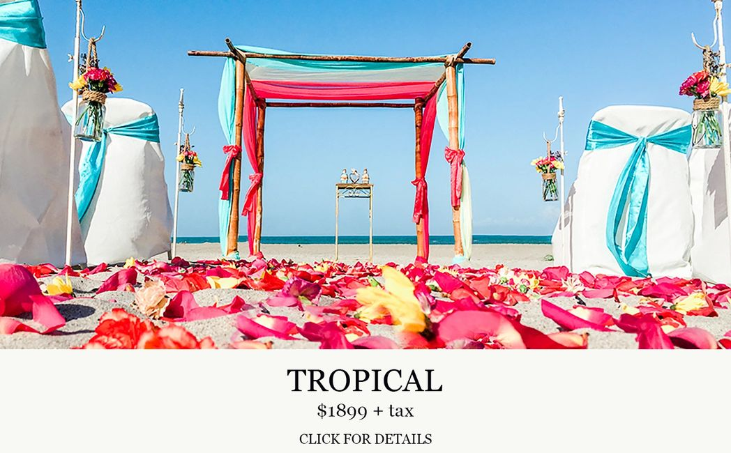 Tropical Cocoa Beach Wedding, Central Florida Wedding Group