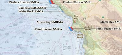 Cambria State Marine Protected Area