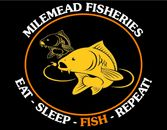 Eat - Sleep - Fish - Repeat!