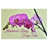 Intentional Living Feng Shui