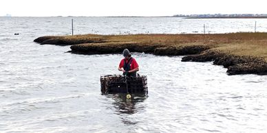 Haskin Shellfish Lab tech deploys experimental oyster farm equipment in southern Barnegat Bay, NJ