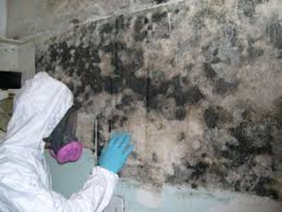 Mold remediation and removal is important in a home.  Call Southern Restoration Services today!