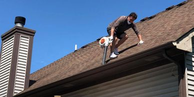 ugly shingles roof cleaning michigan soft-wash mold mildew algae exterior house washing gutter