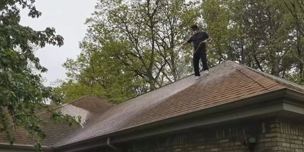 ugly shingles roof cleaning house washing mold algae lichen commercial soft-wash michigan