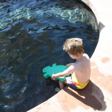 R pool  R & R Pool Care, LLC - Pool Cleaning, Pool Repairs