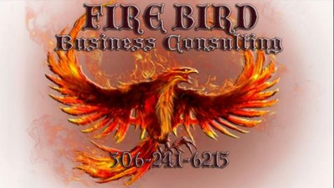 Firebird Business Consulting