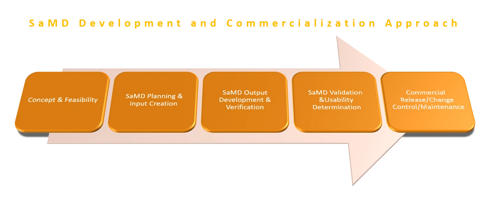 SaMD Development and Commercialization Approach. Concept. Input creation. Verification. Usability.