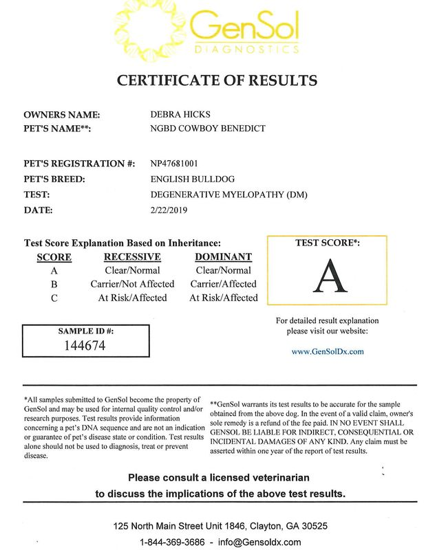 "Grade ""A"" -Clear genetic test results!"